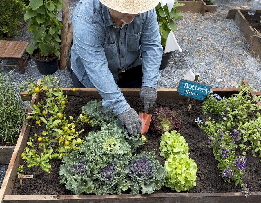 6 Garden Tools That Can Help Keep an Older Gardener Safe