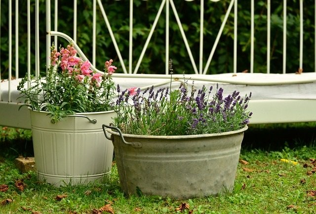 7 Ways Older Adults Benefit from Gardening