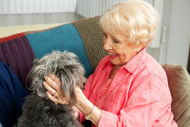 Decide On The Best Dog For Your Senior Living Situation