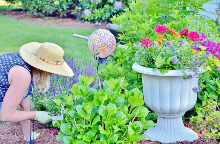 Gardening is a healthy way for older adults to stay active.