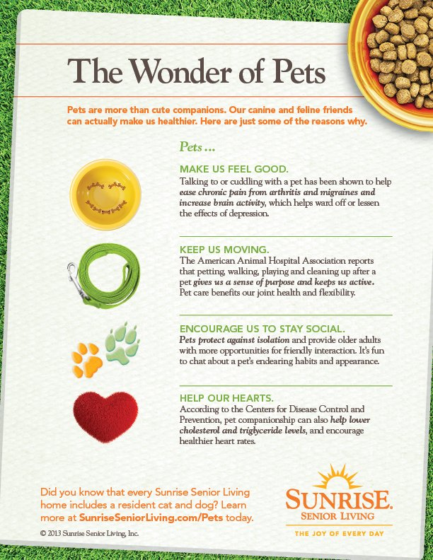 The Wonder of Pets