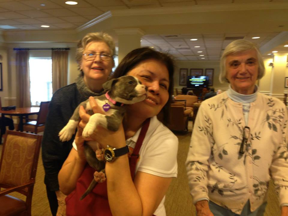A special puppy visited residents at Brighton Gardens of West Orange, NJ!