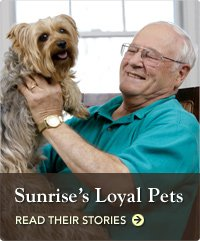 Sunrise's Loyal Pets
